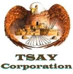 TSay Logo